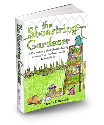 The Shoestring Gardner